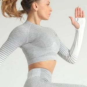 MAYZIA Ombre Power Seamless Crop Sleeved NWT